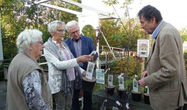 Aggie van Ruijven, Giny Klompien, Noud Slot en Dik Mesman in de museumtuin, waar de Acer palmatum 'Garnet' als potplant te koop is voor de bezoekers.