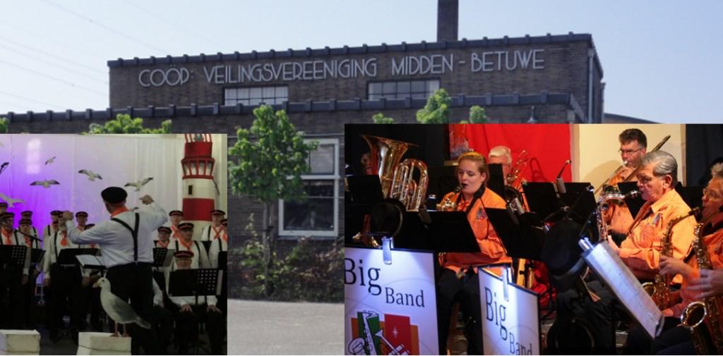Gezellige muziek in Driel!