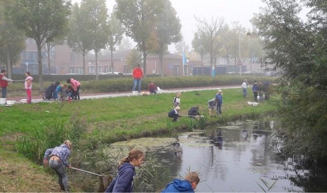 Leerlingen van groep 6 van CBS Het Kompas onderzoeken begin september de waterkwaliteit van de sloot in de buurt van hun school.(Foto: M. Soethoudt)