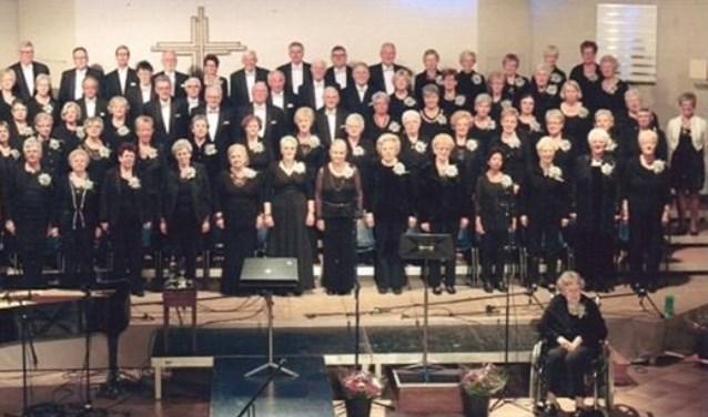 Het SER koor bestaat 30 jaar. (Foto: SER koor)