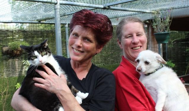 Karin met kater Max die een goed thuis zoekt en Sandra met haar eigen hondje Pablo, die uit Spanje is bemiddeld. (Foto: Lysette Verwegen)