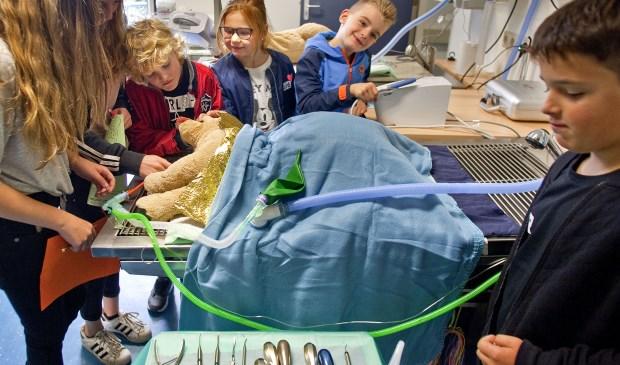 Opendag in het dierenstreekziekenhuis tijdens dierendag in Dordrecht. (foto: Jeroen Verbueken / Fotopersbureau Busink)