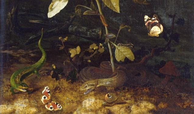 Een detail van een het werk 'bosgrond met slang en hagedis' uit ongeveer 1675. Het werk is gemaakt door tto Marseus van Schrieck. Foto:Staatliches Museum Schwerin
