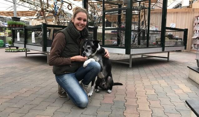 Pieternel Wouters (hier op de foto met haar hond Scip) van De Landerije Tuin en Dier kwam op het idee om een hondenshow te houden voor asielhonden die op zoek zijn naar een baasje. Op 10 december wordt de tweede editie gehouden.