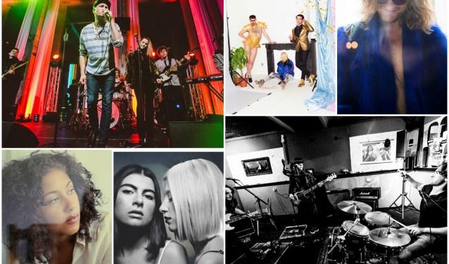 Een greep uit deelnemende bands en artiesten van de Popronde Oss. Met de klok mee, beginnend linksboven: The Howlin, Fata Boom, GUS, Grim Tim, DOOXS, Amber Gomaa