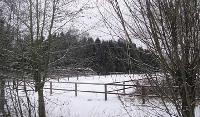 In Natuurgebied De Woerd in Driebergen wordt mogelijk een schaapskooi omgebouwd tot woning. Buurtbewoner Toon van de Sande is het daar niet mee eens.