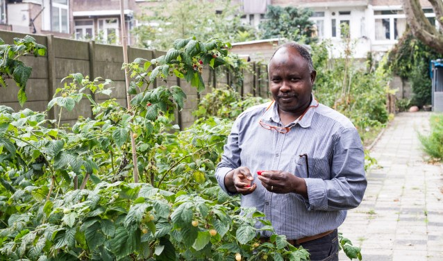 Elemam verbouwt in 'zijn tuin' aan de Ketelstraat alle soorten groente en fruit. Elke vrijdag is er een biomarkt. (Foto: Rosalie Ruardy)