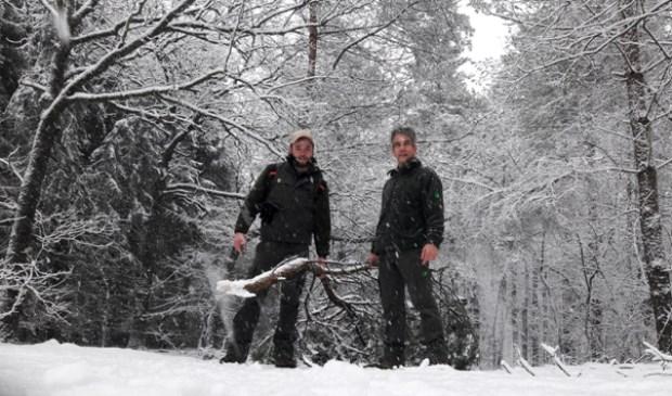 Staatsbosbeheer boswachters Gert en Wessel controleren de paden op afgebroken takken.