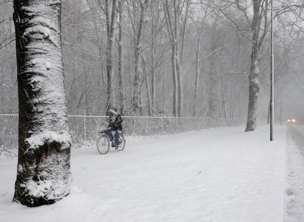 Fietsen op de Nieuwe Veenendaalseweg.  © Persgroep