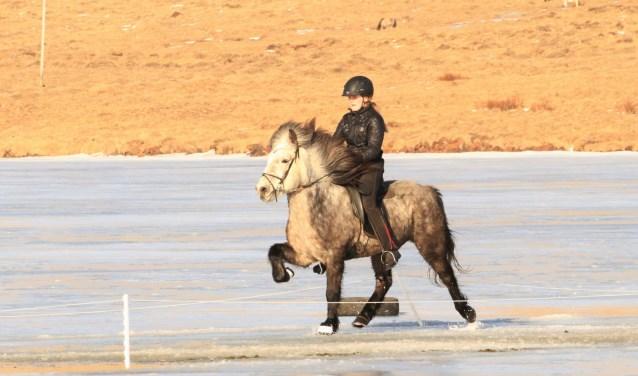 Ásdís moest in augustus haar ruin Sleipnir achterlaten in Oirschot. Inmiddels traint ze met haar andere paard: Keisara frá. Op 17 maart doet ze mee aan Ice Horse Eindhoven.
