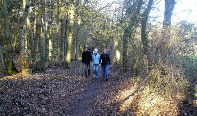 Combineer wandelen dit jaar met gedenken tijdens de wandeltocht Te Voet Te Veld op tweede kerstdag in Helvoirt. Deelnemers van de langere routes rusten bij de Gedenkplaats Haaren '40-'45. Daar is tevens een rondleiding mogelijk.