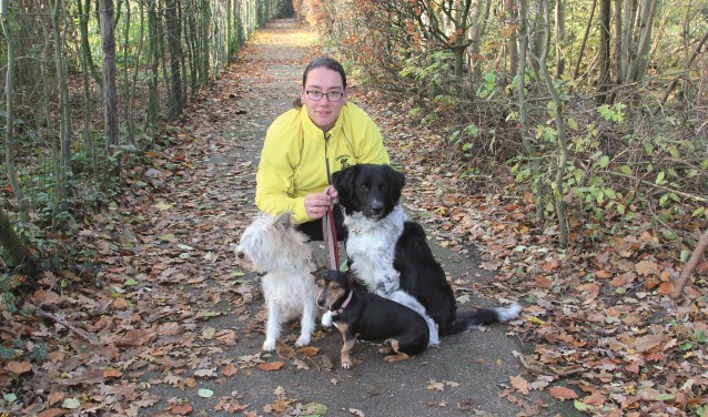 Inge Kemper met haar honden (v.l.n.r.) foxterriër Humphrey, Jackell een kruising van een jackrusselterriër en een teckel en Reitze, een Friese Stabij.