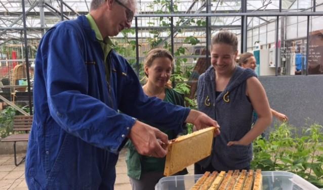 Een de van medewerkers van de bijenwerkgroep laat de honingraten zien aan jongeren (Foto: Gertie Copal).