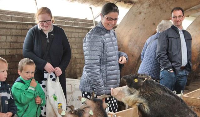 Open dag op zorgboerderij Eben-Haëzer in Nieuw-Lekkerland. (Foto: Ria Scholten)