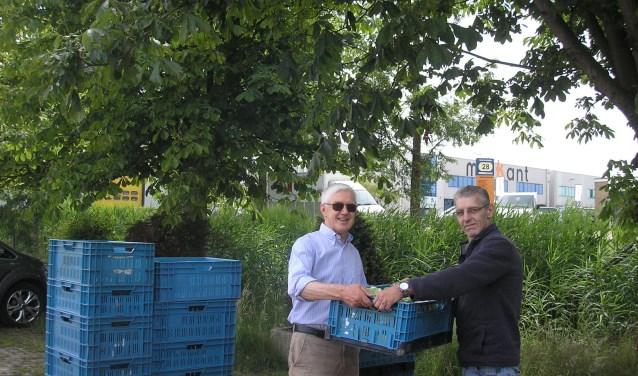 Een van de vele kratten sla en andijvie worden overhandigd aan de Voedselbank.