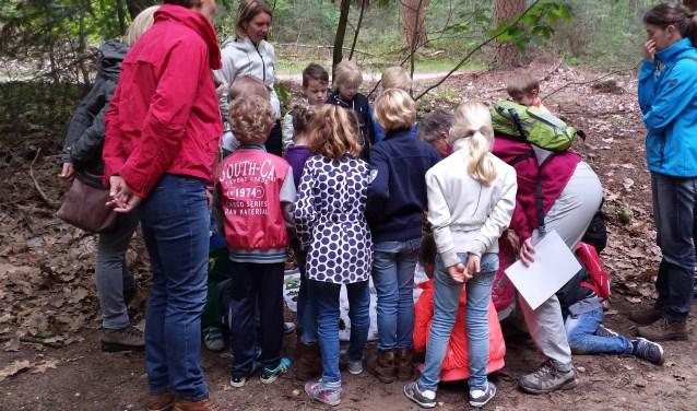 Wat is er nu leuker voor kinderen dan buiten te leren, midden in de natuur? IVN is op zoek naar mensen die de groep schoolgidsen komen versterken.