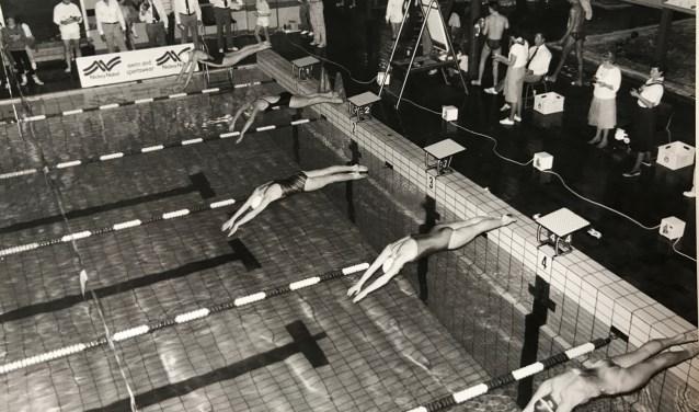 Leden van de vereniging duiken in het zwembad omstreeks jaren 70. Voor het 50-jarige jubileum komt er een speciaal boek uit met leuke anekdotes, persoonlijke verhalen en prachtige foto's van 50 jaar ZWK Merlet.