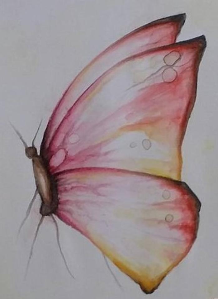 Vlinder aquarelleren de rijnpost for Huis tuin en keuken proefjes