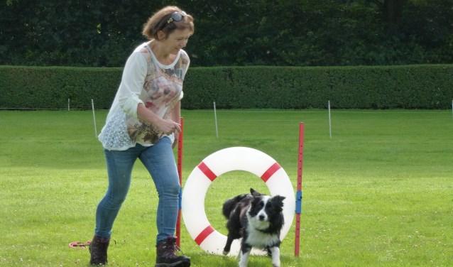Hondeneigenaren kunnen bij de Kynologen Club Rijssen en omstreken terecht voor uiteenlopende trainingen, waaronder een puppycursus en een behendigheidscursus.