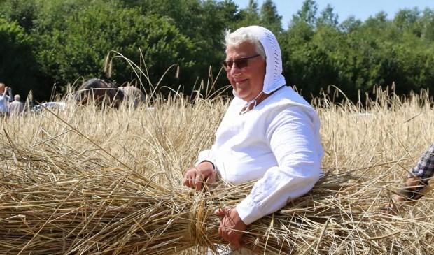 De boeren en boerinnen die op het land werken, zullen de roggehalmen op schoven zetten. Kinderen 'pungelen'op het land: zij verzamelen de laatste korrels graan.