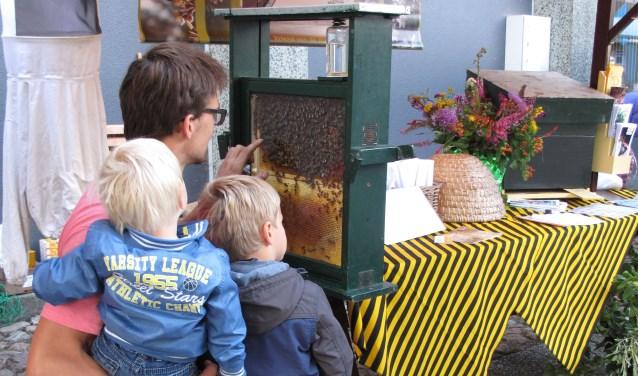 Op de honing- en bijenmarkt is er gelegenheid om overtollige spullen te verkopen. Kinderen laten zich graag schminken als bijen, er is uitgebreide praktische voorlichting bij een observatiekast over de rol van koning, werksters en darren.
