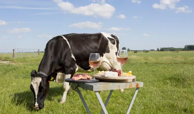 Kaas & Koeien in 't Weiland is een ode aan de koe, tussen de strobalen, in een warmlandleven setting.