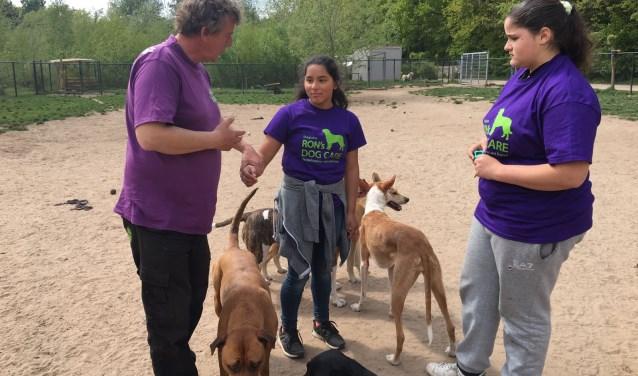 Vitoria en Fatima lopen samen met Daniek stage bij Ron's Total Dog Care. Ze zijn niet bang voor honden, ze spelen en knuffelen. Maar op hun eigen verzoek is er ook veel aandacht voor de hondenverzorging.