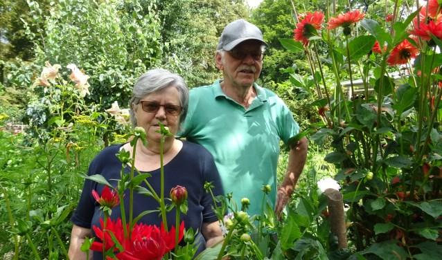 Wim en Janny Ermstrang beheren, met hulp van het Geldersch Landschap, al 37 jaar de Oude Moestuin aan de Dwarssteeg 1 in Brakel. De twee onderhouden de tuin dankzij giften van bezoekers. En mocht je van je tuinbank af willen, bij de Oude Moestuin is 'ie welkom!