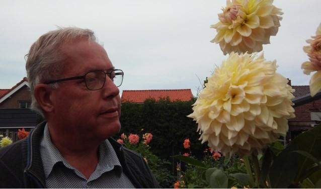 In de dahliatuin van Frans Sturm aan de Van Cittersstraat 3-5 vindt u ruim vierhonderd soorten dahlia's, sommigen hebben zelfs een doorsnede van meer dan 25 centimeter.