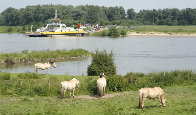 Het drinkwater wordt met name beïnvloed door de kwaliteit van de rivier de Lek. Foto: iStock