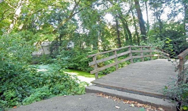 Foto: Asta Diepen Stöpler: Het bruggetje achter buitenplaats Nijenheim ligt midden in het lommerrijke perceel, waarvoor gemeente en omwonenden een gedragen nieuw groenplan moeten zien te vinden.