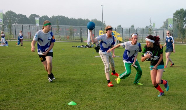 De sport, zwerkbal is inclusief beaters, chasers, seekers en snitch. Oppassen dat je niet geraakt wordt door bludgers.