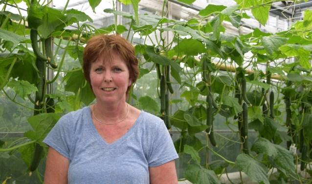 Het zijn drukke dagen voor Hedy Willems. Zij runt met haar familie een komkommerkwekerij.