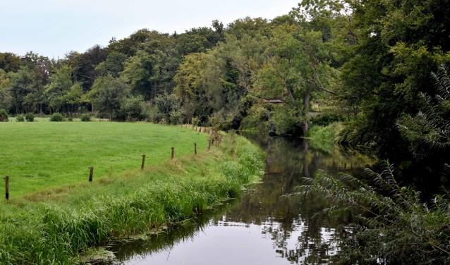 De Heiligenbergerbeek is een mooie beek van acht kilometer lang. De beek dankt haar naam aan de Heiligenberg, een natuurlijke heuvel aan de beek. Een gedeelte van de route door het Heiligenbergerbos loopt langs de beek. (Foto: Hetty Heijne)