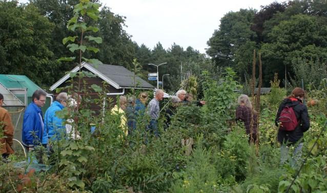 Rob Vereijcken (wijzend, rechts op de foto) geeft een rondleiding in de volkstuin aan de Dongenseweg.