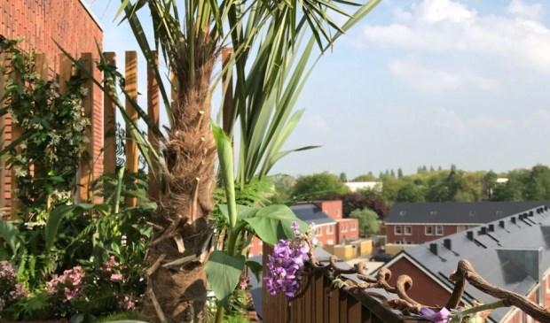 Papendrechts product in eigen huis tuin papendrechts for Uitzending gemist eigen huis en tuin