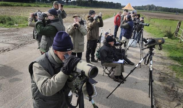 De Vogelwerkgroep Losser doet binnenkort mee een een internationale vogelkijkdag. Dat deden ze al vaker zoals op de foto te zien is. Foto: Reinier van Willigen/Tubantia