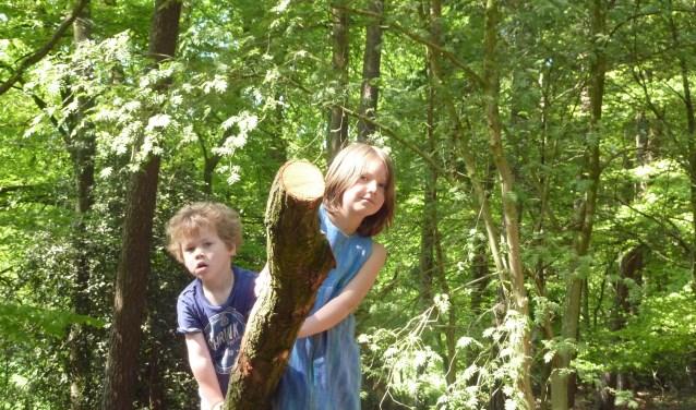 Bij Hof Espelo is het heerlijk klimmen en klauteren voor kinderen.