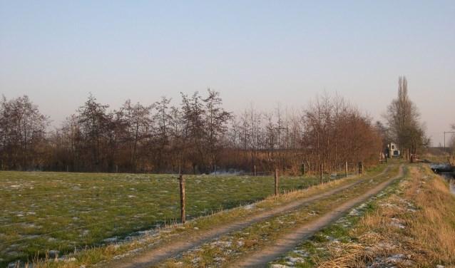 Aan de slag in Schalkwijk. Foto: Jaap ten Boer.