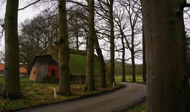 De Schaapskooi aan de Buurtweg in Doorn wordt mogelijk een theehuis. FOTO: Ellis Plokker