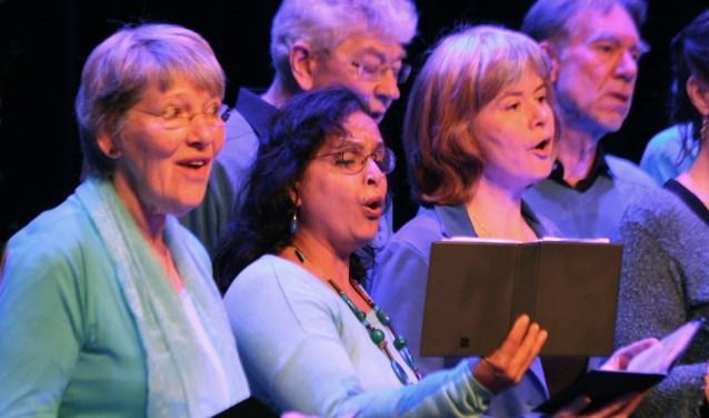 Verenigingen, ensembles groot en klein, bands en solisten kunnen zich inschrijven. (foto Pieter Leeflang)