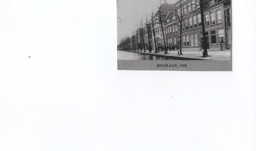 De Molslaan in 1901.