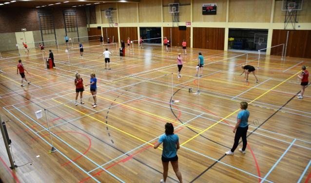 Iedereen die zichzelf heeftvoorgenomen om meer te gaan bewegen in 2018 kan dat doen bij Badmintonvereniging ´t Pluumke.
