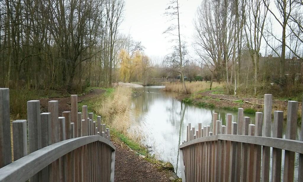 Mindful Walk in Westervoort
