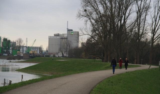 De Grebbedijk tussen Wageningen en Rhenen moet vanaf 2022 verstevigd worden om de veiligheid te vergroten. Nu worden de plannen gemaakt om natuur, recreatie, toerisme en verkeersveiligheid in de plannen te integreren. (foto: Kees Stap)