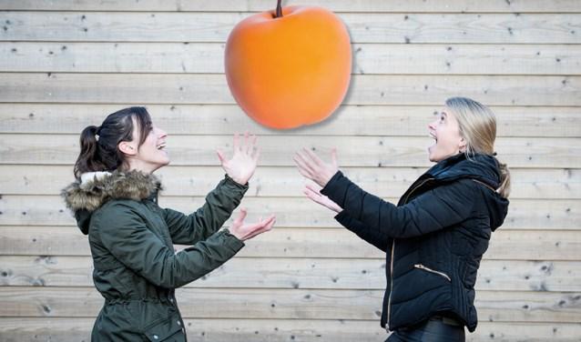De Veenendaalse Stichting Netwerk voor Jou maakt kans op een Appeltje van Oranje 2018. (Foto: PR)