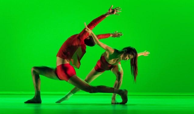 De állerbeste toptalenten van dansacademie Codarts Rotterdam. Hun vakmanschap komt tot uiting in nieuwe, speciaal voor deze dansers gecreëerde choreografieën.© foto: Marcel van Oostrom