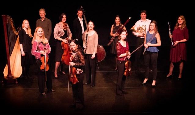 Begin het jaar goed met het Ebony Ensemble. Foto: PR