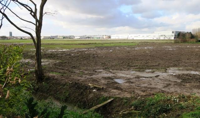 Is hier over vier maanden een kersenboomgaard aangeplant? (foto GvS)