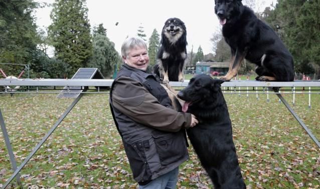 Van jongs af aan had Annelies interesse in hondensport. Geïnspireerd door de behendigheidsoefeningen uit de Natte Neuzenshow van Martin Gaus bouwde ze voor haar honden een eigen parcours in de tuin. (foto: Han Kastein)